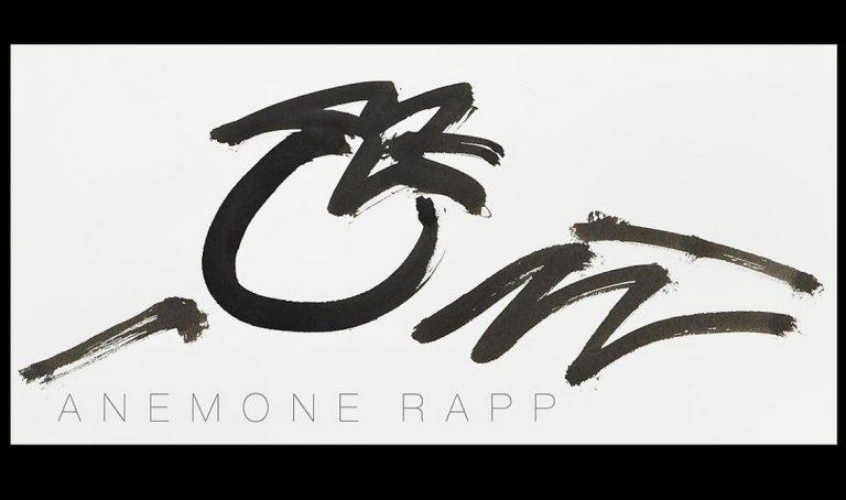Website der Künstlerin Anemone Rapp